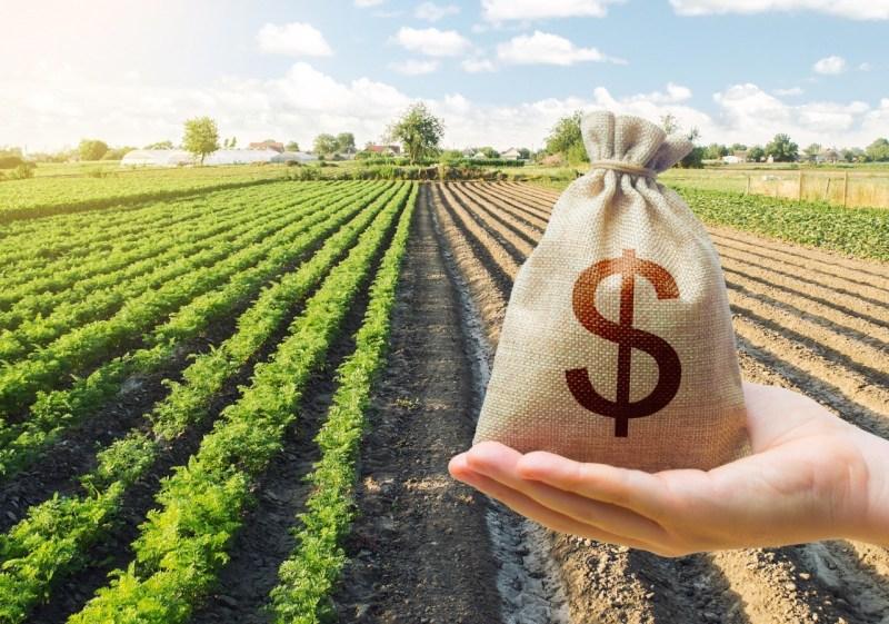pajak tanah