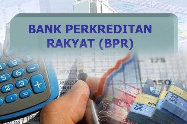 Apa itu bank perkreditan rakyat